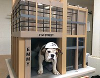 Emmy, the 2M mascot, in the Washington Post