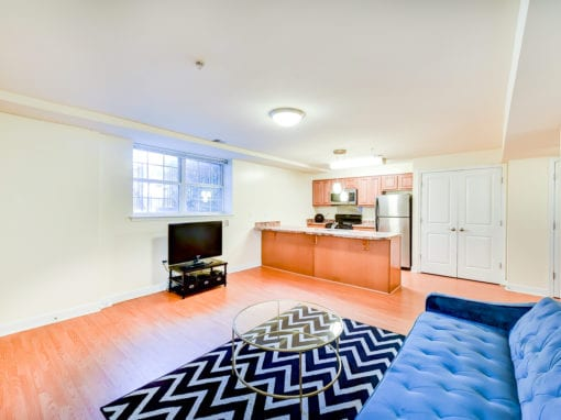 ParkVistaApartments-Southeast-DC-Affordable-Livingroom